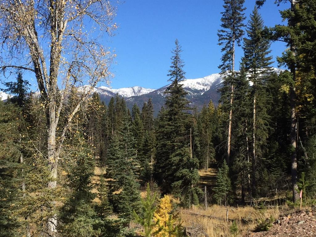 260 Grayling Drive, Seeley Lake, MT 59868 - Seeley Lake, MT real estate listing
