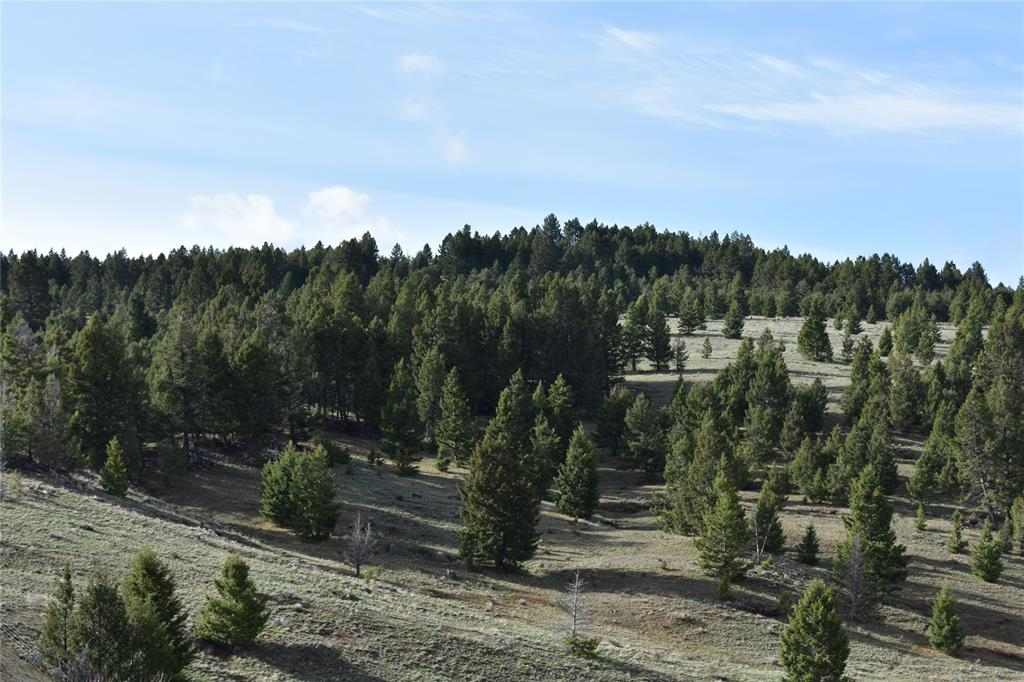 TBD Basin Creek Road, Butte, MT 59701 - Butte, MT real estate listing