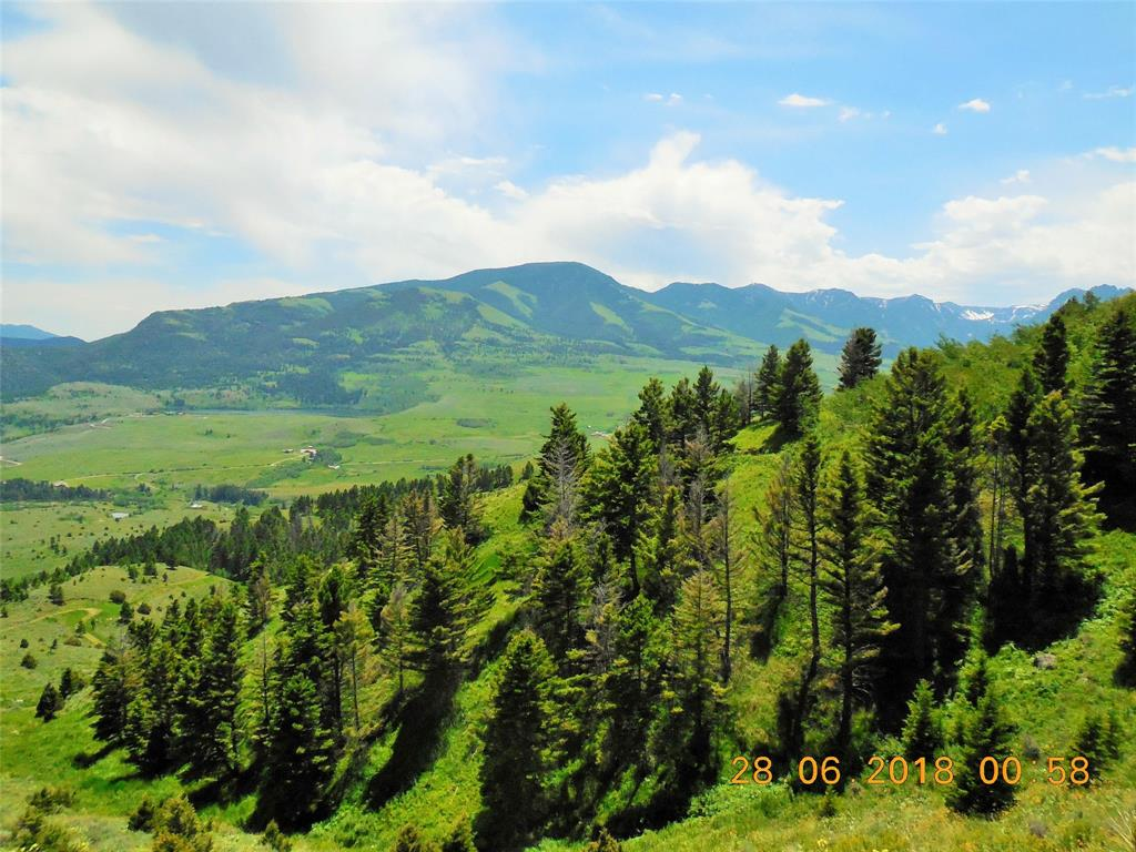 TBD Grizzly Meadow Road Road, Emigrant, MT 59027 - Emigrant, MT real estate listing