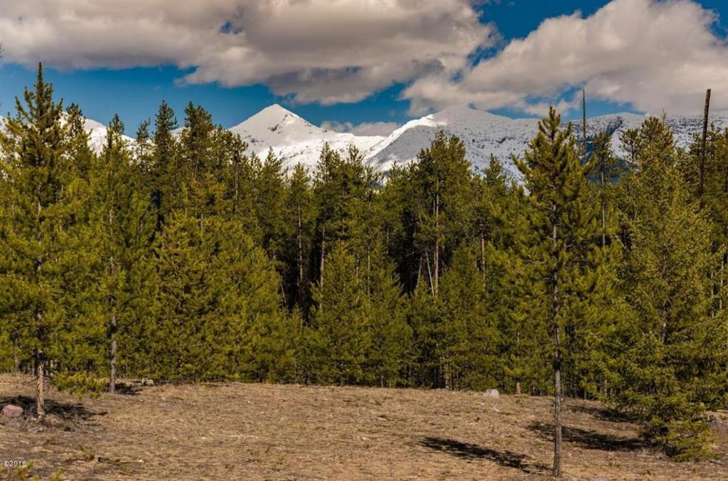 Lot 2 Cougar Run, Condon, MT 59826 - Condon, MT real estate listing