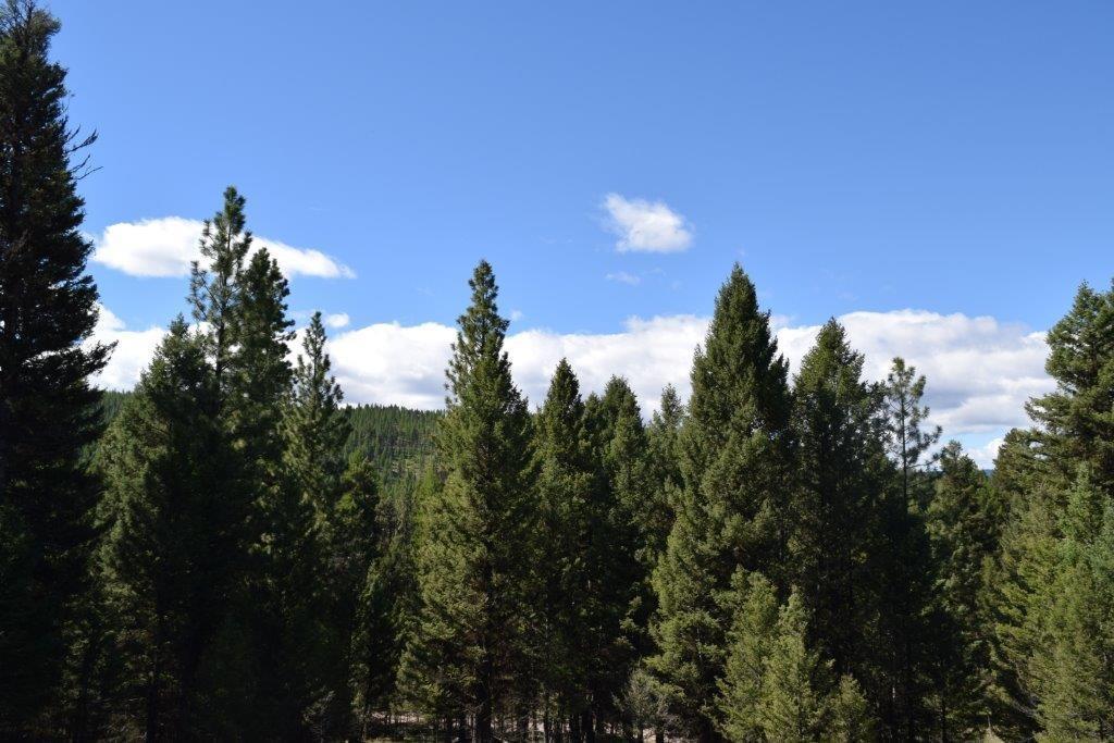 266 Leota Peak Court, Seeley Lake, MT 59868 - Seeley Lake, MT real estate listing