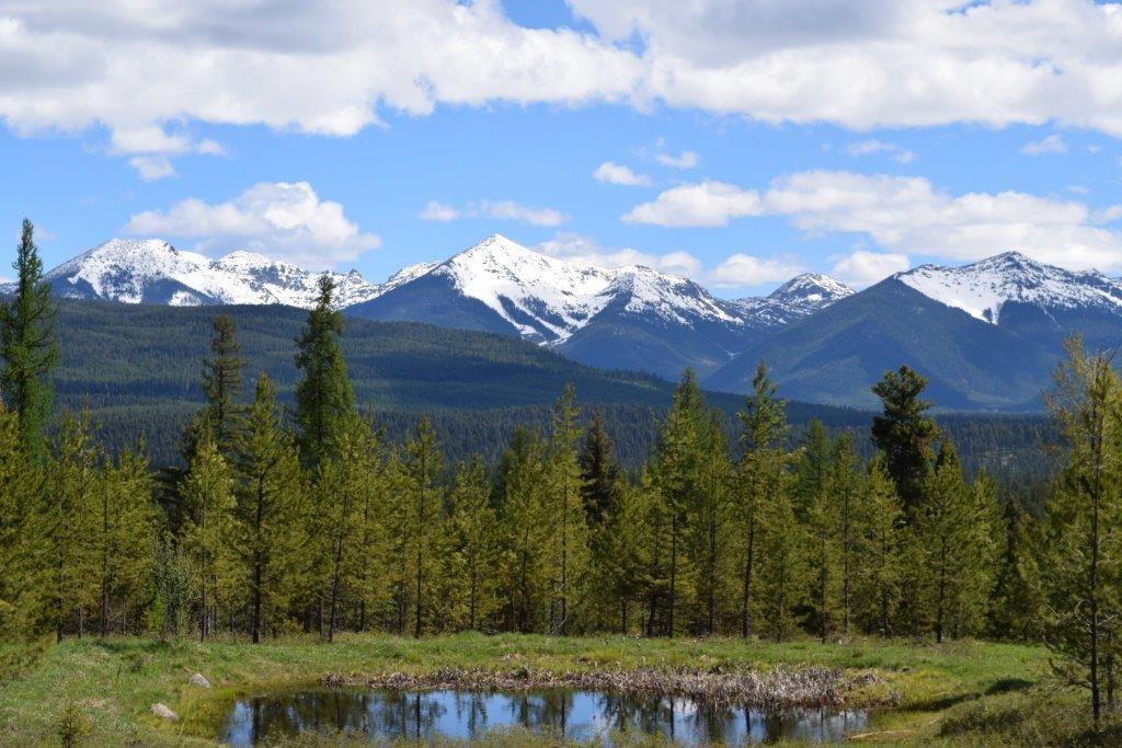 818 Beaver Creek Road, Seeley Lake, MT 59868 - Seeley Lake, MT real estate listing