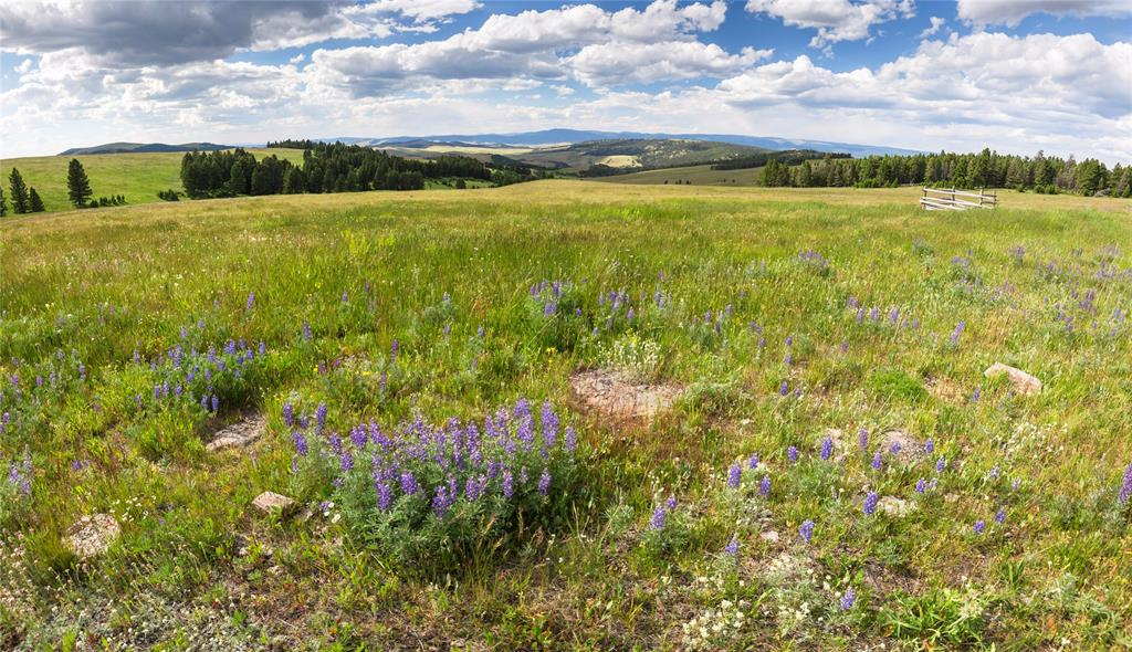 Meagher County Real Estate Listings Main Image