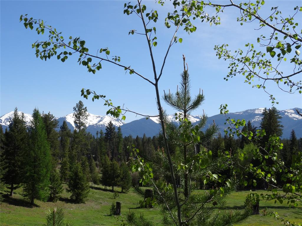 370 Peacemaker Place, Seeley Lake, MT 59868 - Seeley Lake, MT real estate listing