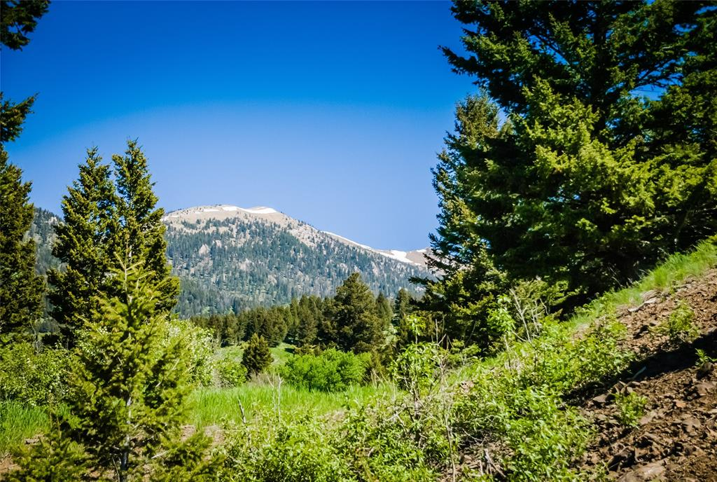 Tract 19 Place Creek Property Photo - Bozeman, MT real estate listing