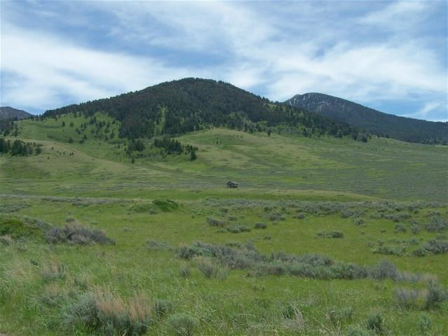TBD Parcel 78 Property Photo - Cameron, MT real estate listing