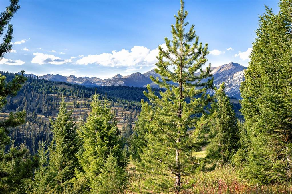 Tract 7, 595 Ousel Falls View Road Property Photo - Big Sky, MT real estate listing