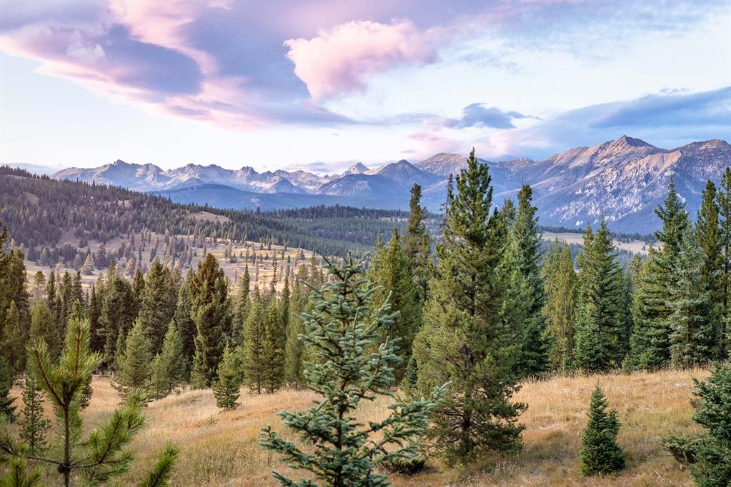 Tract 8, 595 Ousel Falls View Road Property Photo - Big Sky, MT real estate listing