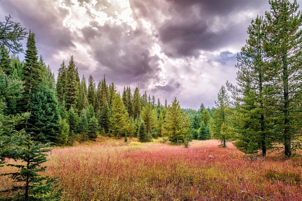 Tract 3, 595 Ousel Falls View Road Property Photo - Big Sky, MT real estate listing