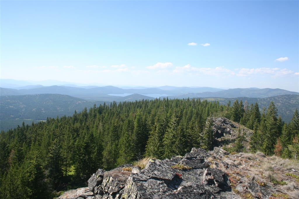 TBD Haskill Mountain Road Property Photo - Kila, MT real estate listing