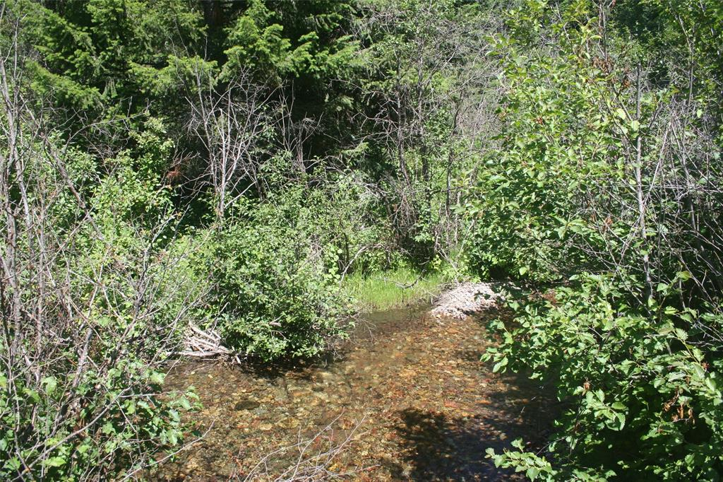 TBD Bear Creek Road Property Photo - Lolo, MT real estate listing