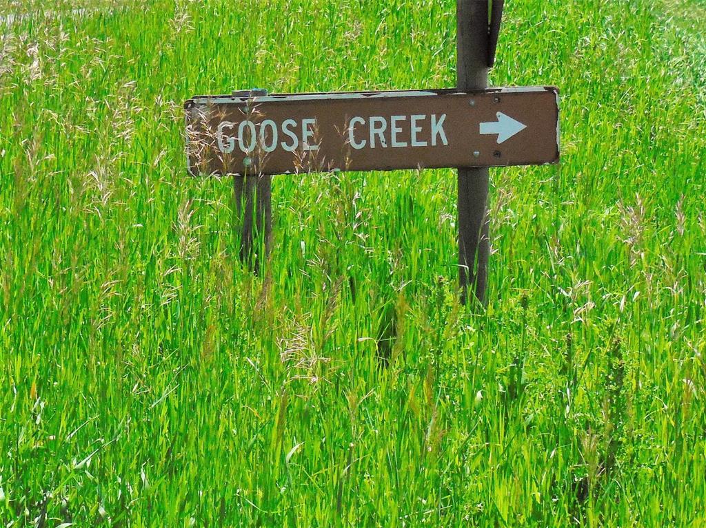 TBD Goose Creek Road, Bozeman, MT 59715 - Bozeman, MT real estate listing