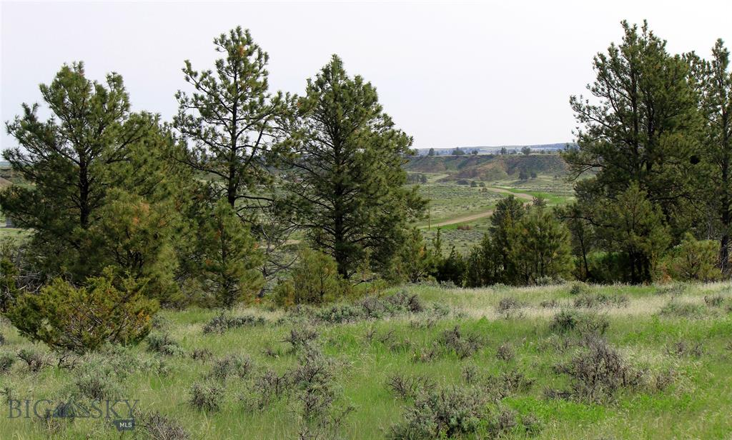 tbd Snowflake Road, Roundup, MT 59072 - Roundup, MT real estate listing