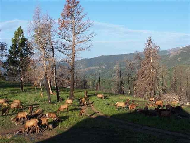 Lot 23 Mountain Valley Tracts, Emigrant, MT 59027 - Emigrant, MT real estate listing