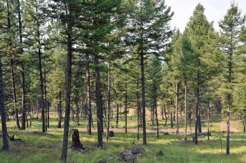 512 Bitterroot Drive, Seeley Lake, MT 59868 - Seeley Lake, MT real estate listing