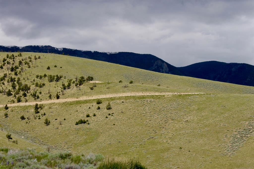 NHN Freedom Trail, Belfry, MT 59008 - Belfry, MT real estate listing