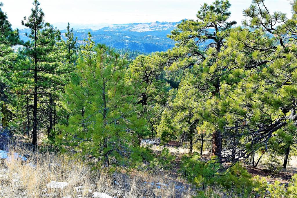 450 Sugarloaf Lane Property Photo - Cascade, MT real estate listing