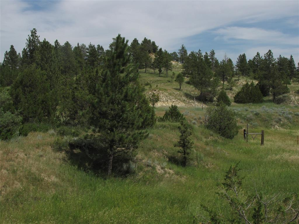 NHN Moon Creek Rd, Miles City, MT 59301 - Miles City, MT real estate listing