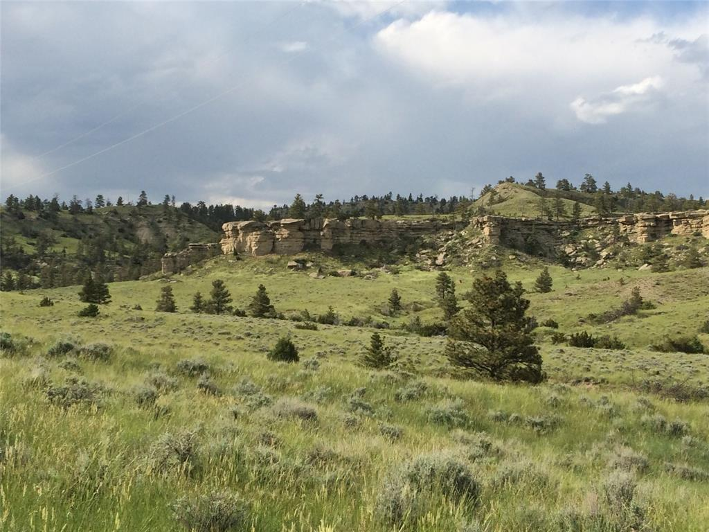 NHN Falling Star Rd, Park City, MT 59063 - Park City, MT real estate listing
