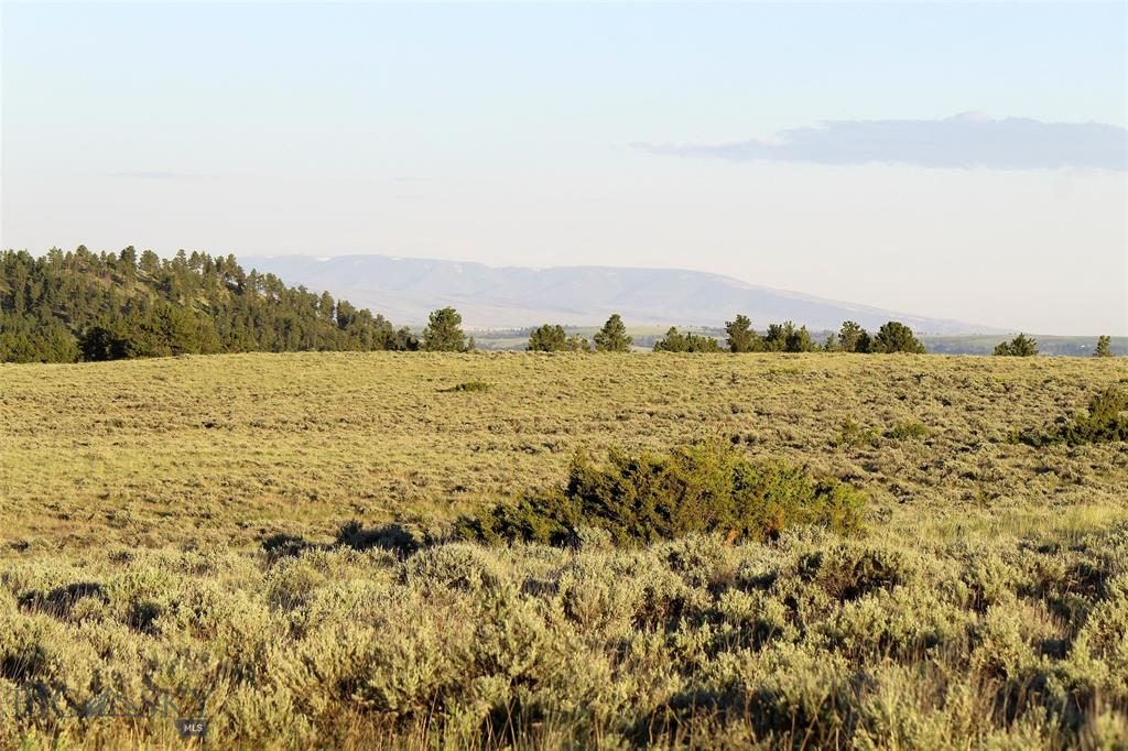 tbd Pine Crest Road, Columbus, MT 59019 - Columbus, MT real estate listing