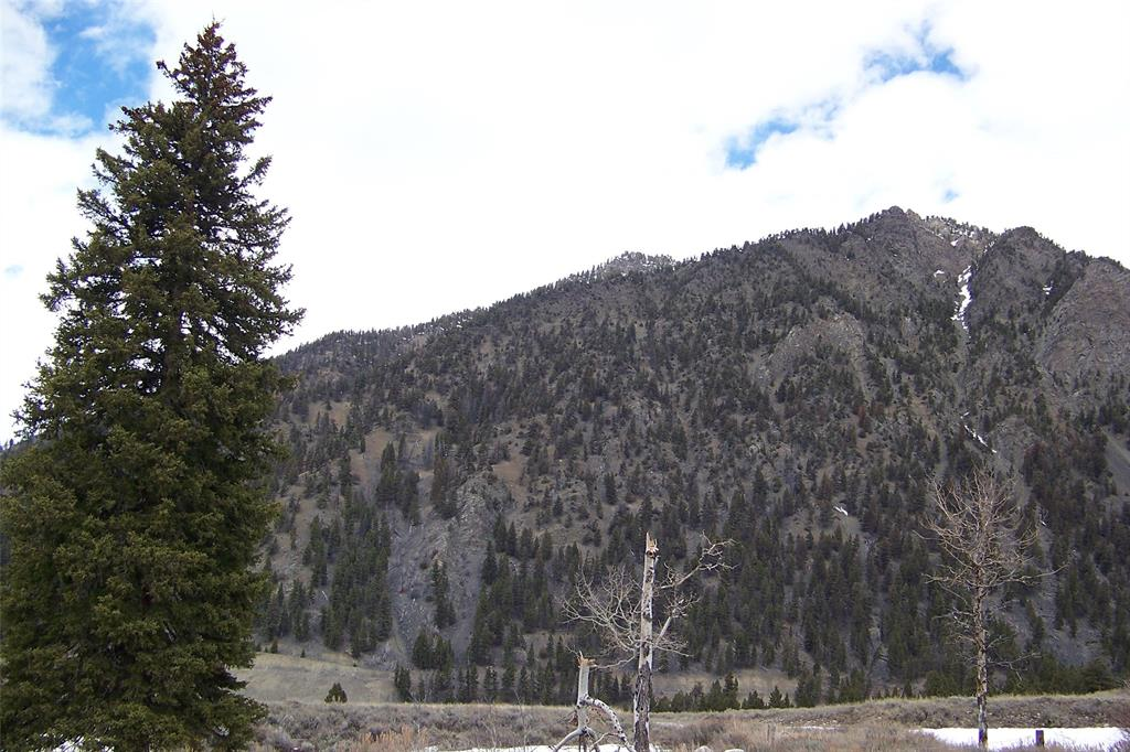Lot 40B Sportsman's Paradise Property Photo - Cameron, MT real estate listing