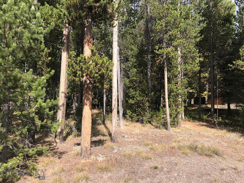 305 Lamar Avenue, West Yellowstone, MT 59758 - West Yellowstone, MT real estate listing