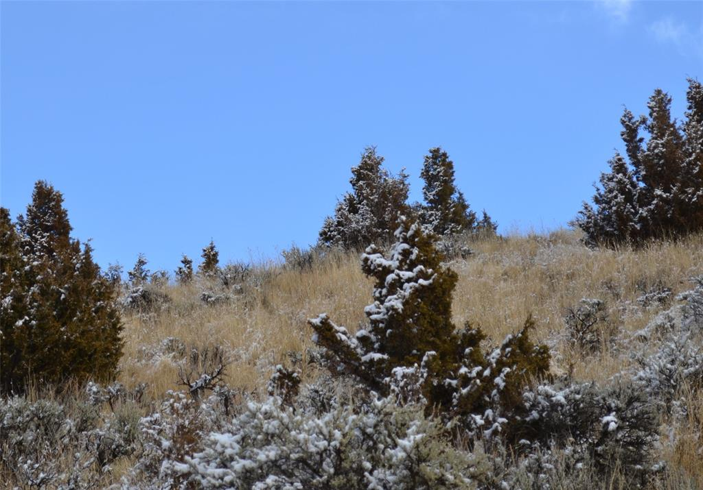 TBD Block 111, Lot 4-6, Virginia City, MT 59755 - Virginia City, MT real estate listing