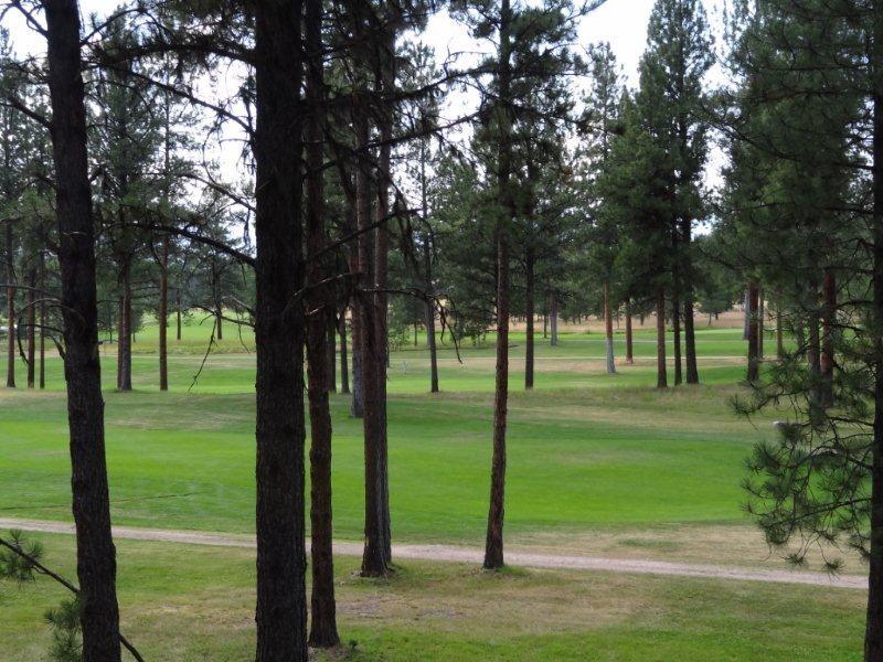 Lot 47 Double Arrow Road, Seeley Lake, MT 59868 - Seeley Lake, MT real estate listing