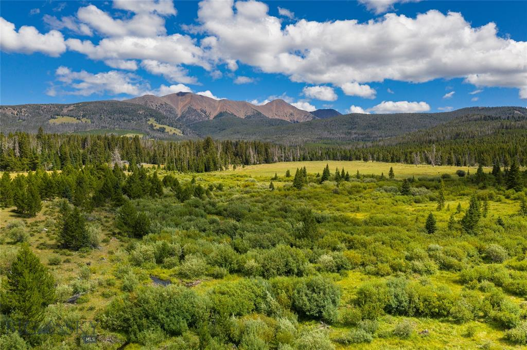 TBD Moose Creek Headwaters, Butte, MT 59701 - Butte, MT real estate listing