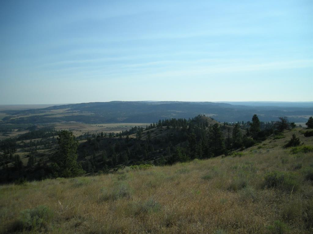 1 Cedar Coulee Hideaway Property Photo - Reed Point, MT real estate listing