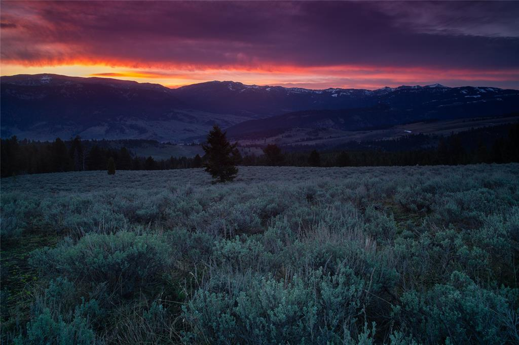 Royal Coachman Ranch Property Photo - Big Sky, MT real estate listing