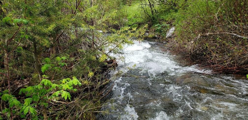 TBD Wisconsin Creek Road, Sheridan, MT 59749 - Sheridan, MT real estate listing