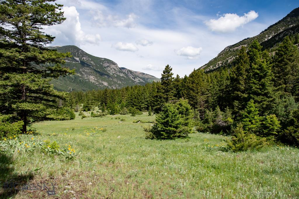 TBD-Lot 2 Main Boulder Road, McLeod, MT 59052 - McLeod, MT real estate listing