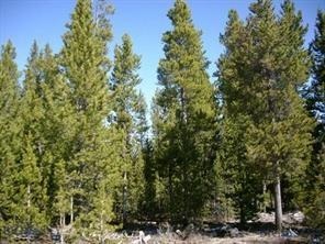 504 Campanula Avenue Property Photo - West Yellowstone, MT real estate listing