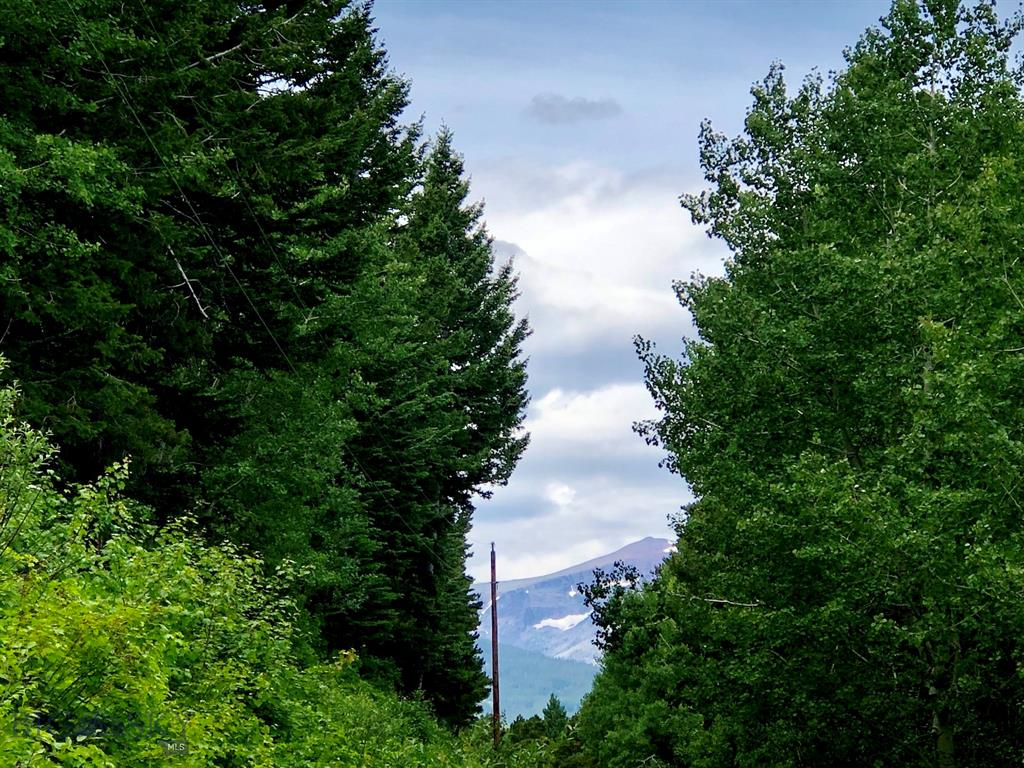 0 Big Springs Trail, East Glacier, MT 59434 - East Glacier, MT real estate listing