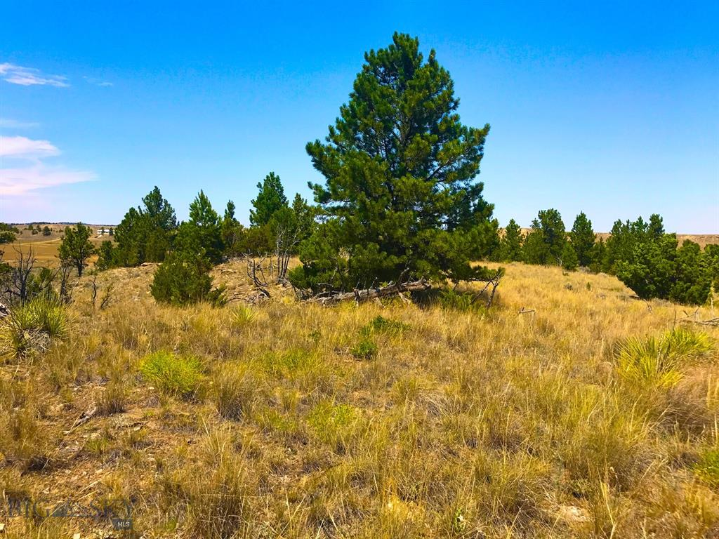 24 Sunshine, Roundup, MT 59072 - Roundup, MT real estate listing