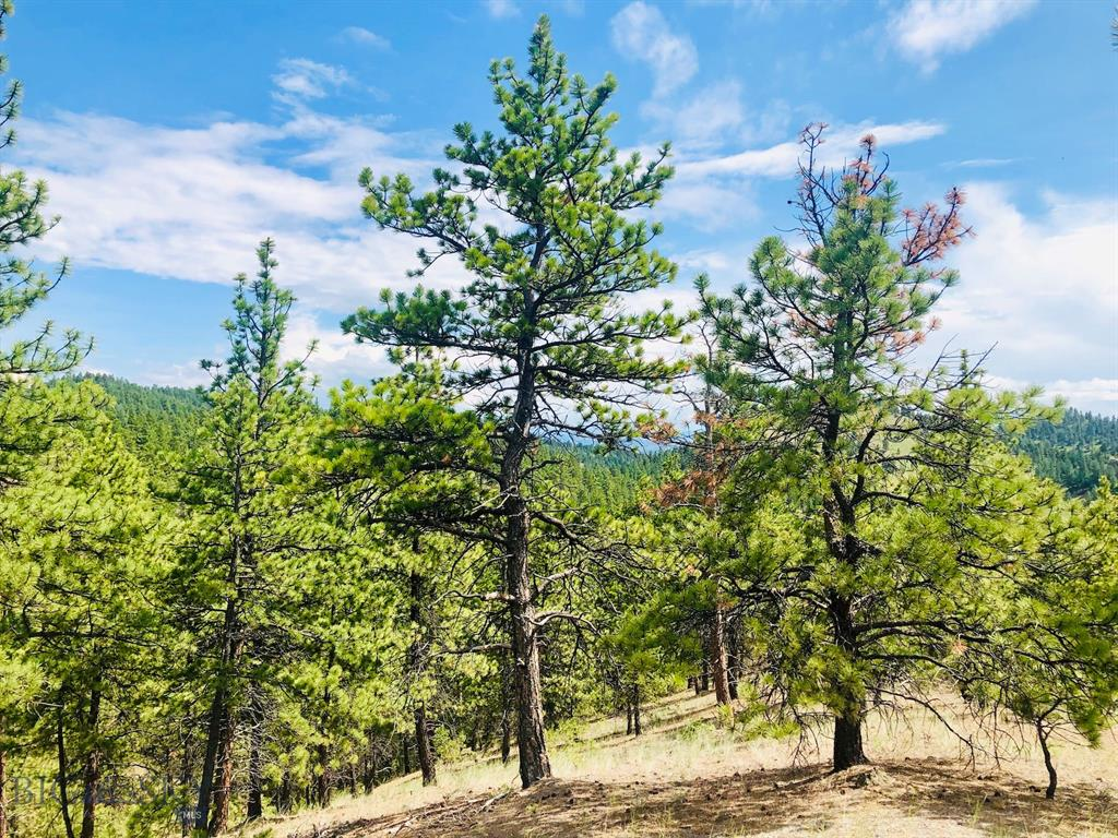 0 Upper Sawmill Creek Road Property Photo - Cascade, MT real estate listing