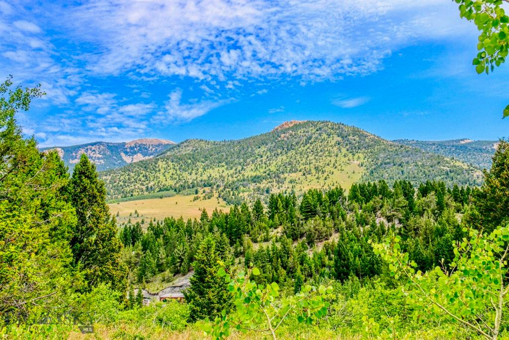 300 Forest Service Road Property Photo