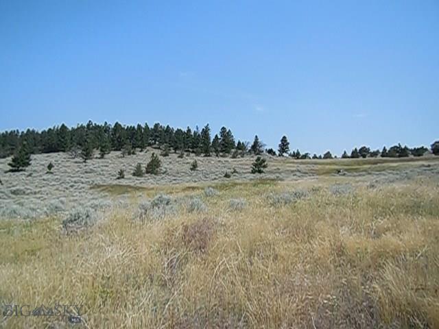TBD Mayn Cr. Trail, White Sulphur Springs, MT 59645 - White Sulphur Springs, MT real estate listing