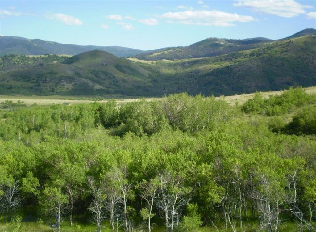 Lot 81-82 Outlaw Trail Property Photo - Anaconda, MT real estate listing