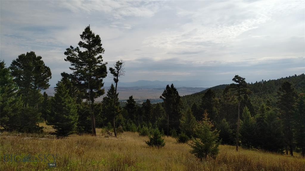 0 Turk Road Property Photo - Helena, MT real estate listing