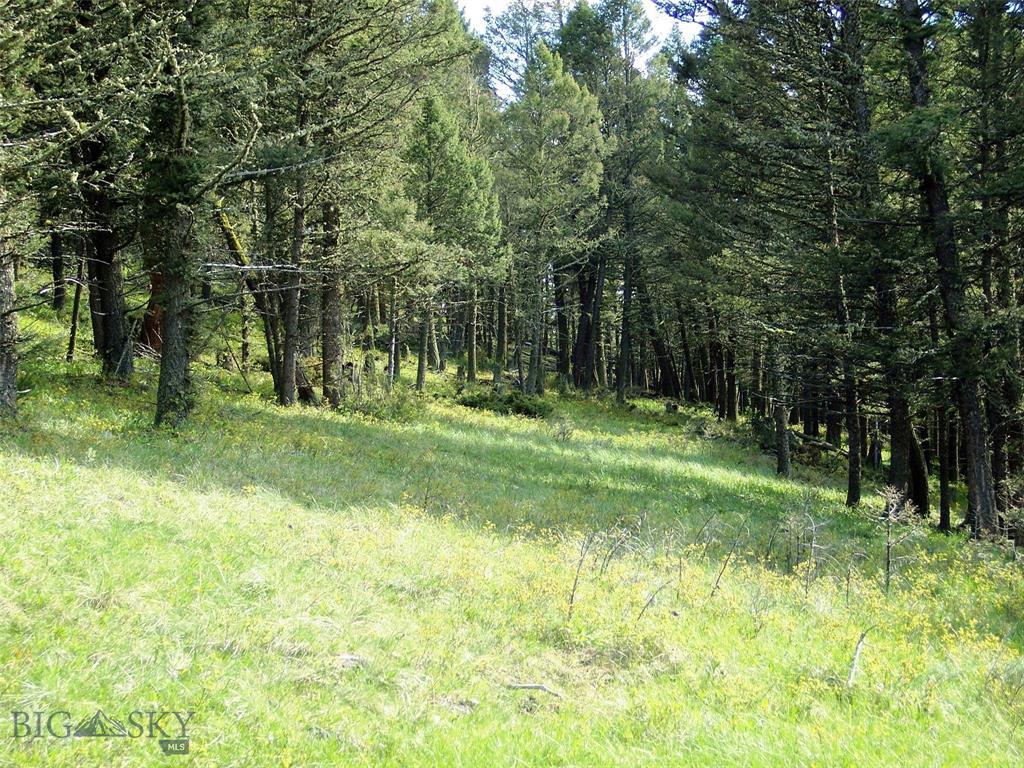 NHN Lot 1 Butler Hill, White Sulphur Springs, MT 59645 - White Sulphur Springs, MT real estate listing