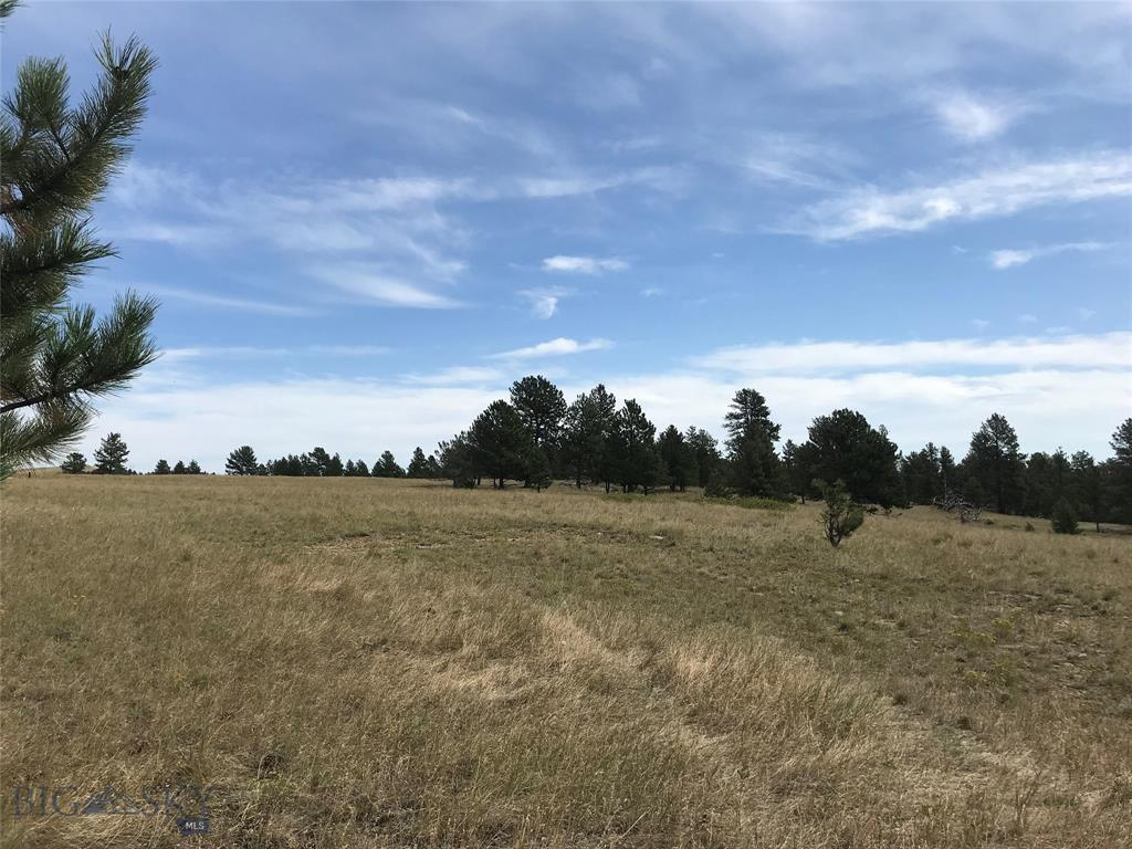 TBD Dry Hole Trail, Reed Point, MT 59069 - Reed Point, MT real estate listing