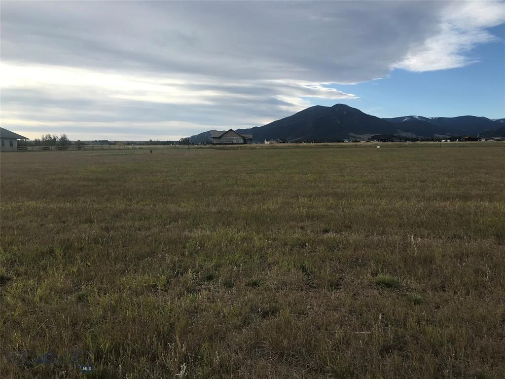 Lot 45 Big Sky Drive, Red Lodge, MT 59068 - Red Lodge, MT real estate listing