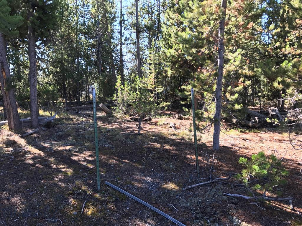 TBD Lewis Avenue, West Yellowstone, MT 59758 - West Yellowstone, MT real estate listing