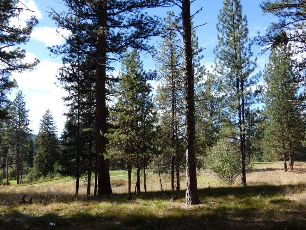 NHN Golf View Drive, Seeley Lake, MT 59868 - Seeley Lake, MT real estate listing