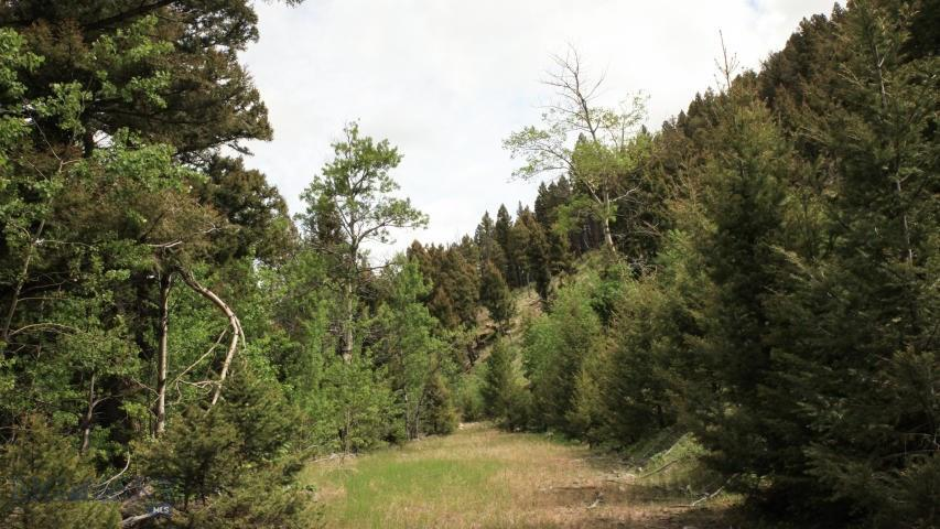 0 High Ore (Florence Lode) Road, Boulder, MT 59632 - Boulder, MT real estate listing