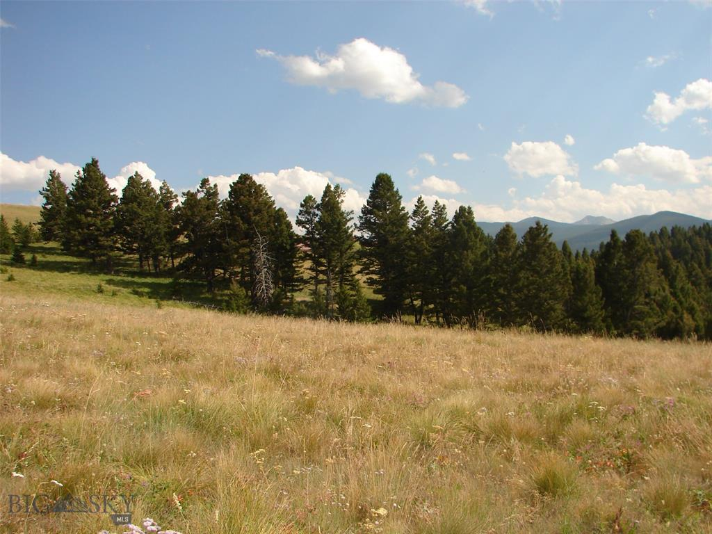 tbd Aspen Drive Property Photo - Philipsburg, MT real estate listing