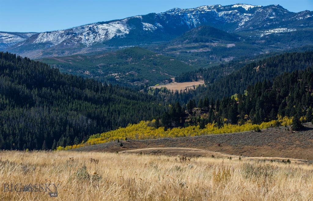 TBD Trail Creek Road Property Photo - Bozeman, MT real estate listing