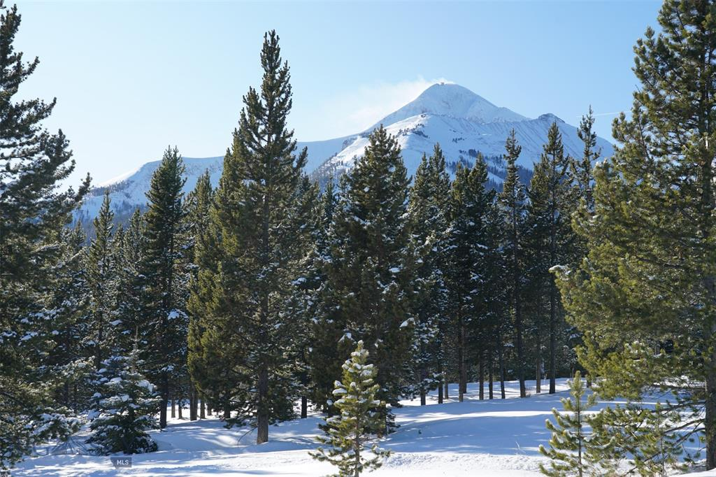 TBD White Grass Property Photo - Big Sky, MT real estate listing
